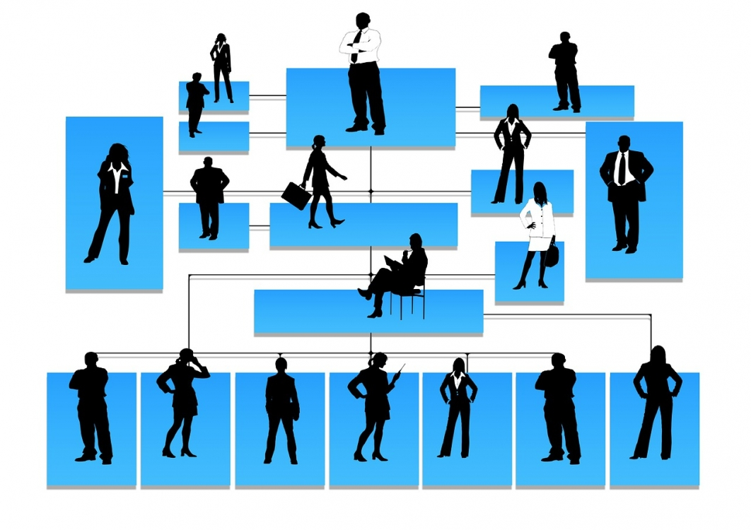 Distinction between Executive Directors vs Non - Executive Directors